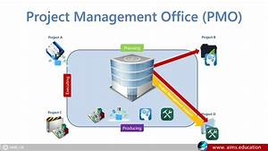 What Is Project Management Office Definition  U0026 Pmo Roles