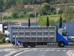 Iveco Albi : avant de s 39 int resser aux trangers restons un peu au c ur de la r gion un blog de camions ~ Gottalentnigeria.com Avis de Voitures