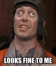 Steve Buscemi Eyes Meme - looks fine to me meme