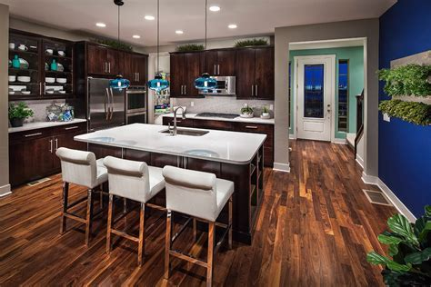 black walnut flooring Kitchen Contemporary with beige