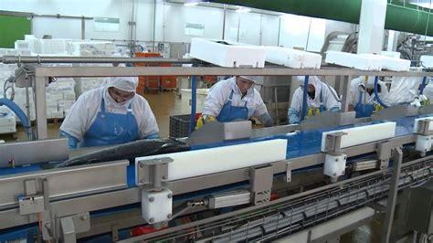 chambre des metiers boulogne sur mer in boulogne metier de production