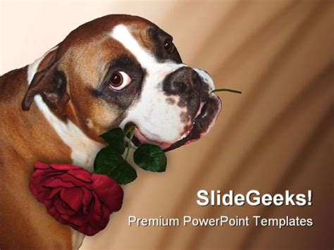 cute dog animals powerpoint backgrounds  templates