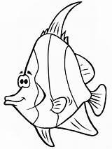 Fish Coloring Cartoon Angel Drawing Angelfish Template Sketch Sea Sky Getdrawings Coloringsky sketch template