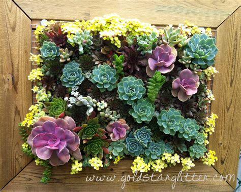 vertical succulent garden vertical succulent wall frames planters goldstar glitter