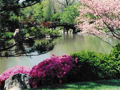 spring japanese garden wallpaper images outdoors