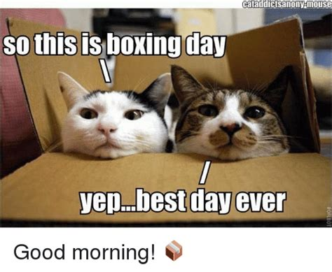 Boxing Day Meme - 25 best memes about best day ever best day ever memes