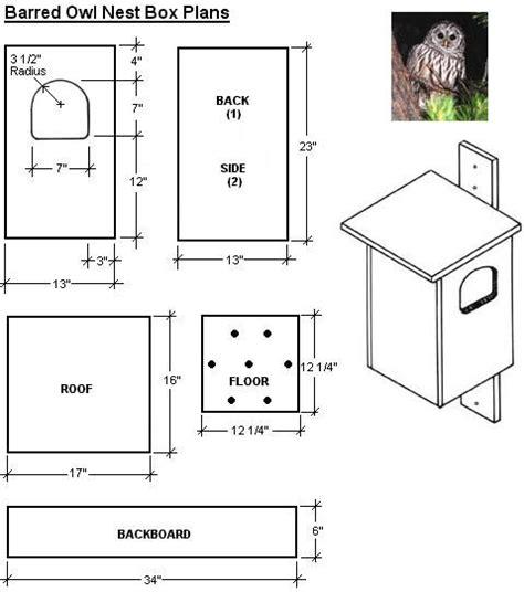 easy bird house plan screech owl bird house