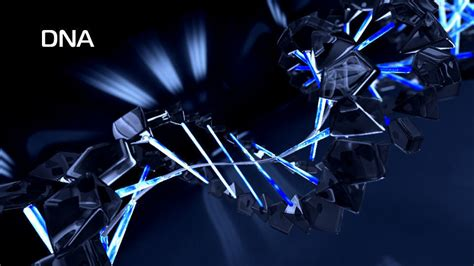 Animated Dna Wallpaper - dna animation 3d model 3d model animated rigged max