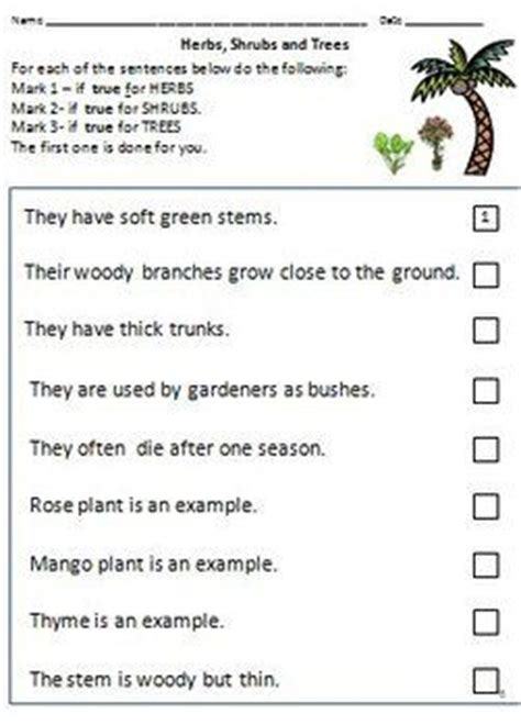 plant types climbers creepers herbs shrubs  trees