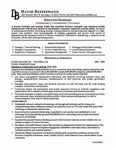 Executive Resume Template Examples Free Samples