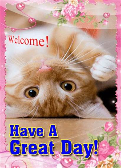 Ecard Animated Gifs Cat Kitty Greetings Dear