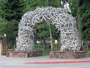 Jackson Hole Wyoming Antler