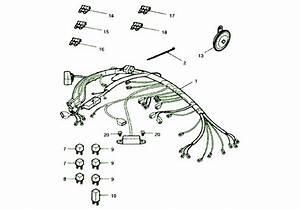 2003 Triumph Tiger 1050 Wiring Fuse Box Diagram  U2013 Auto