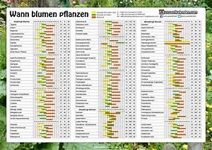 Aussaatkalender 2017 Pdf : blumen pflanzen ~ Whattoseeinmadrid.com Haus und Dekorationen