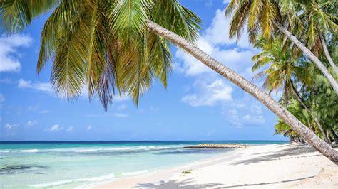caribbean revealed   popular zoom background