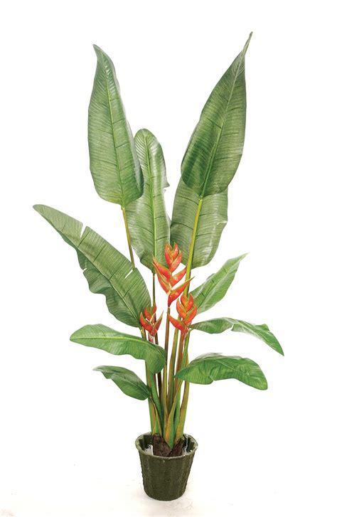 Artificial Tropical Plants Plantworks