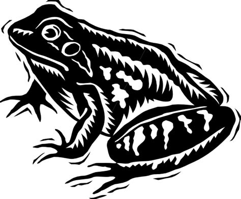 Frog Clipart Black And White Black And White Frog Clip At Clker Vector