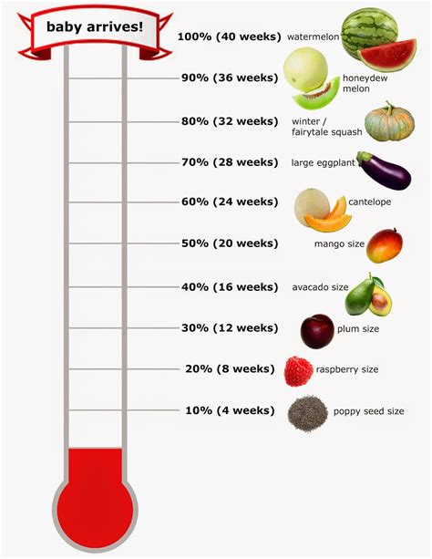 Baby Size Chart By Week Pregnant Baby Growth Chart Choice