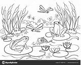 Coloring Wetland Animals Vector Landscape Colorear Frog Dibujos Het Paisaje Voor Animales Landschap Volwassenen Adult Dieren Paisajes Adults Wetlands Moerasland sketch template