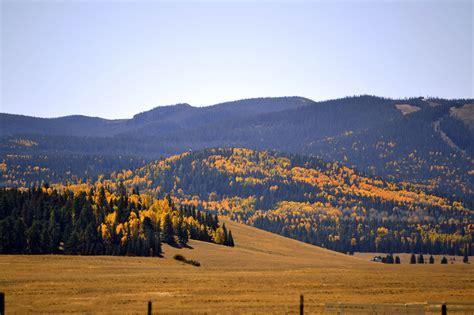 fall colors  northeastern az mogollon rim news