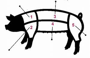 Guide To Pork Cuts   Article