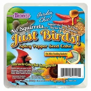 Duncraft com: No Squirrels Just Birds!™ Spicy Pepper