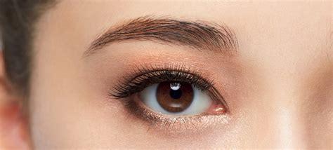 work  copper rose trend  asian eyes nylon