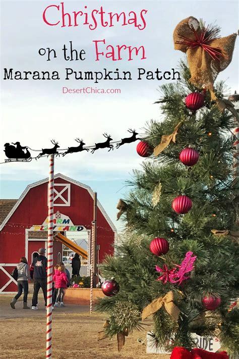 Marana Pumpkin Patch by Christmas On The Farm Lizardmedia Co