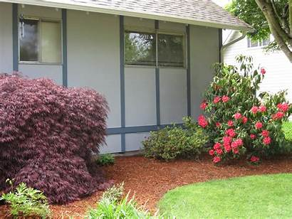 Foundation Hide Ugly Ways Landscaping Around Plants