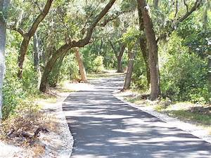 Gulf State Park's Backcountry Trail | Snowbirds Gulf Coast