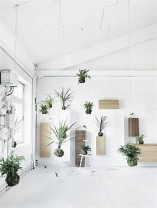 Büro Pflanzen Pflegeleicht : pflanzen f rs b ro bessere raumluft durch zimmerpflanzen aequivalere ~ Michelbontemps.com Haus und Dekorationen