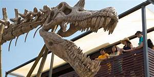 The Dinosaur Protection Group has hacked the Isla Nublar ...