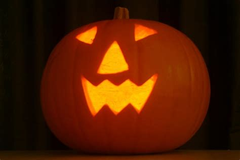 Using Pumpkin For Diarrhea In Dogs by Does Pumpkin Help With Diarrhea In Dogs