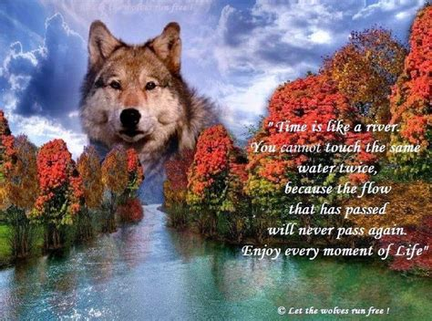 wolves run  lone wolf quotes pinterest wolf