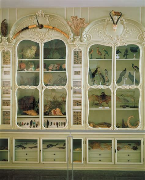 cabinet object lesson transitional object