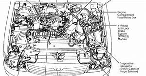Wiring Diagram  13 2002 Buick Lesabre Belt Diagram