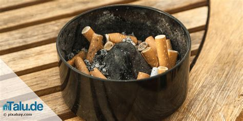 Zigarettengeruch Wohnung Entfernen by Rauchgeruch Zigarettengeruch Aus Der Wohnung Entfernen