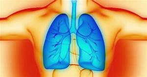 Common Plant Compound Found To Reverse Lung Problems From
