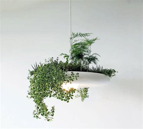 babylon light hanging garden light fixture the green