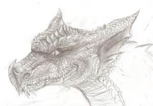 Ice Dragon Drawings