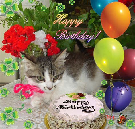 It offers you to send ecards to your friends or family members with ease on their birthday, anniversary, christmas, diwali, newyear and so on. Be Happy! Free Happy Birthday eCards, Greeting Cards   123 Greetings