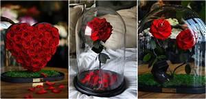 Rose Eternelle Sous Cloche : on la veut la rose ternelle ou presque de la b te et ~ Farleysfitness.com Idées de Décoration