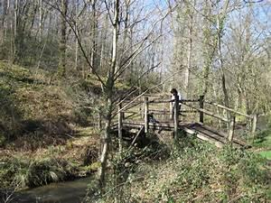Petit Pont En Bois : photo le petit pont de bois qui enjambe le ruisseau de la brousse ~ Melissatoandfro.com Idées de Décoration