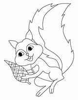 Squirrel Coloring Pages Flying Printable Squirrels Preschool Sheets Scaredy Clipart Cliparts Template Clip Popular Getdrawings Library Getcolorings Coloringhome sketch template