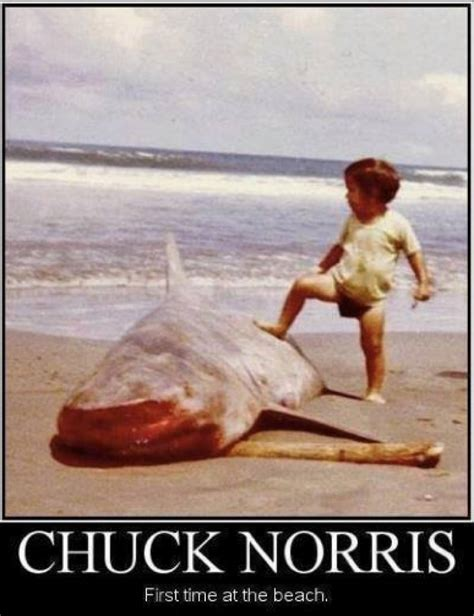 Funny Beach Memes - chuck norris meme http www jokideo com chuck norris is chronic pinterest chuck