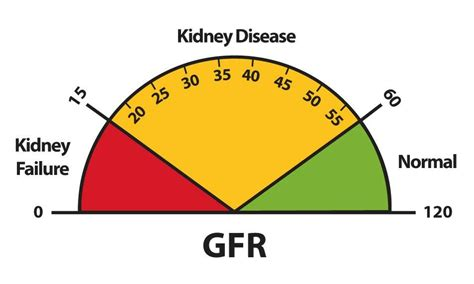 kidney failure stages treatment test