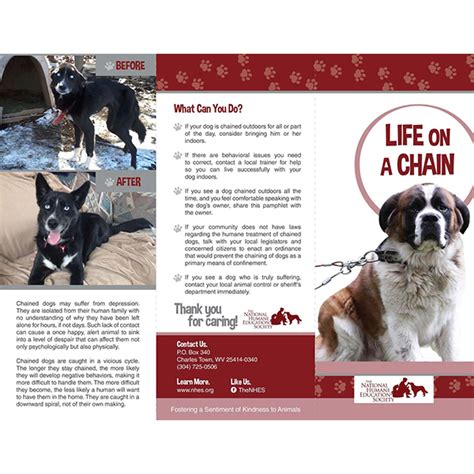 life   chain animal welfare nonprofit national