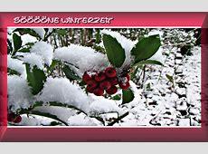 Bilder zum Winter schöne Winterzeit mit Beeren im Schnee