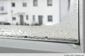 Schimmel Am Fenster Entfernen : fenster problem schimmel am fensterrahmen entfernen ~ Whattoseeinmadrid.com Haus und Dekorationen