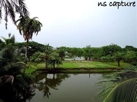File:Natural beauty of bangladesh village.JPG
